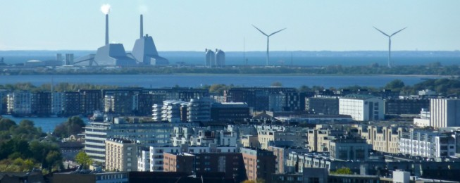 Working Paper: The Danish system of electricity policy-making and regulation